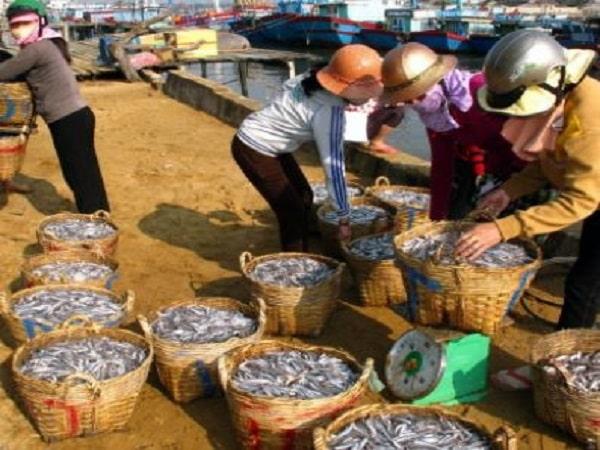 Mơ thấy mua cá có điềm báo gì? đánh con gì trúng?